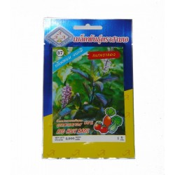 Tree basil seeds (70pcs)